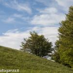 Panorama (232) Monte Pelpi