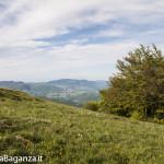 Panorama (245) Monte Pelpi