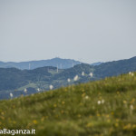 Panorama (260) Monte Pelpi