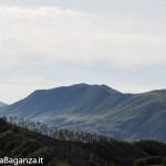 Panorama (311) Monte Pelpi