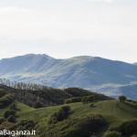Panorama (312) Monte Pelpi