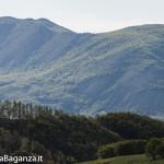 Panorama (313) Monte Pelpi