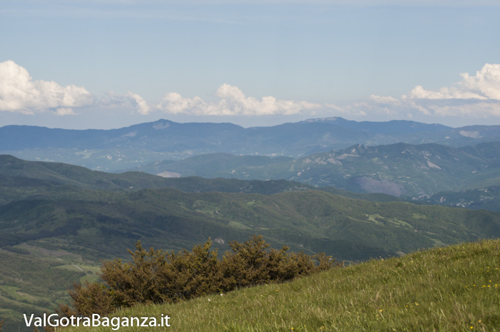 Panorama (381) Monte Pelpi