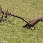 aratro di ferro (101)