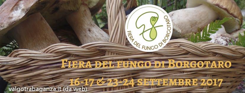 42° Fiera Fungo di Borgotaro IGP