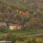 Foliage (145) Val Gotra
