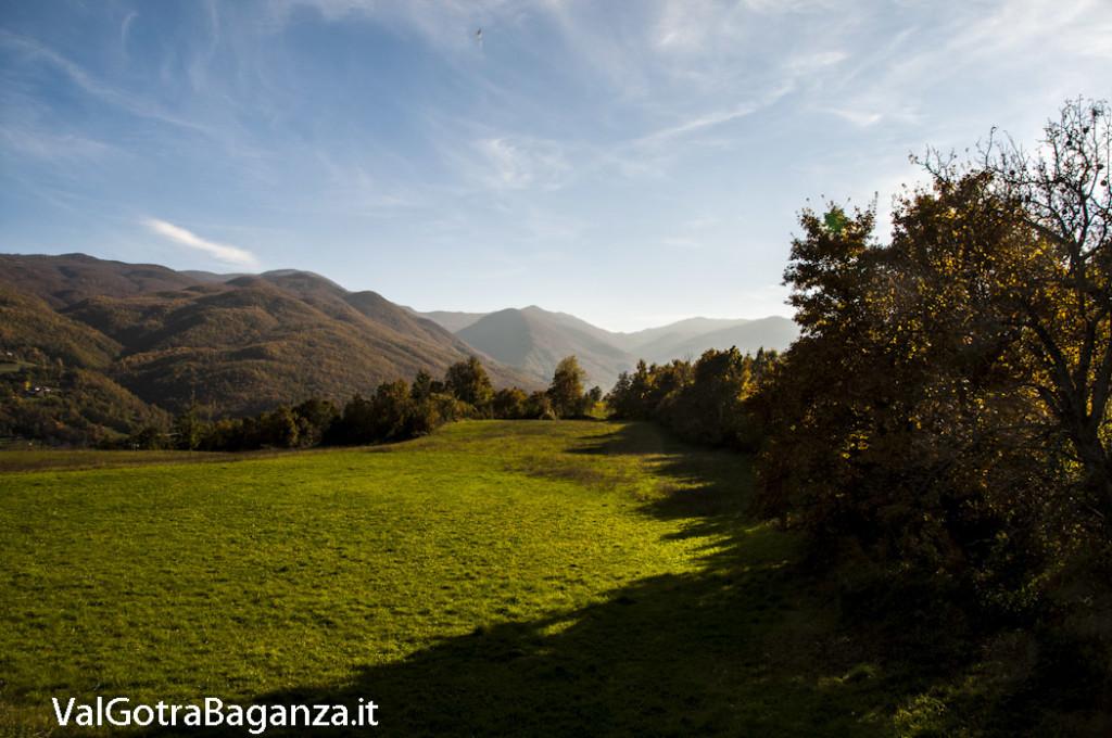 Foliage Albareto (100) Val Gotra