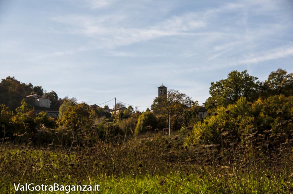 Foliage Albareto (123) Folta