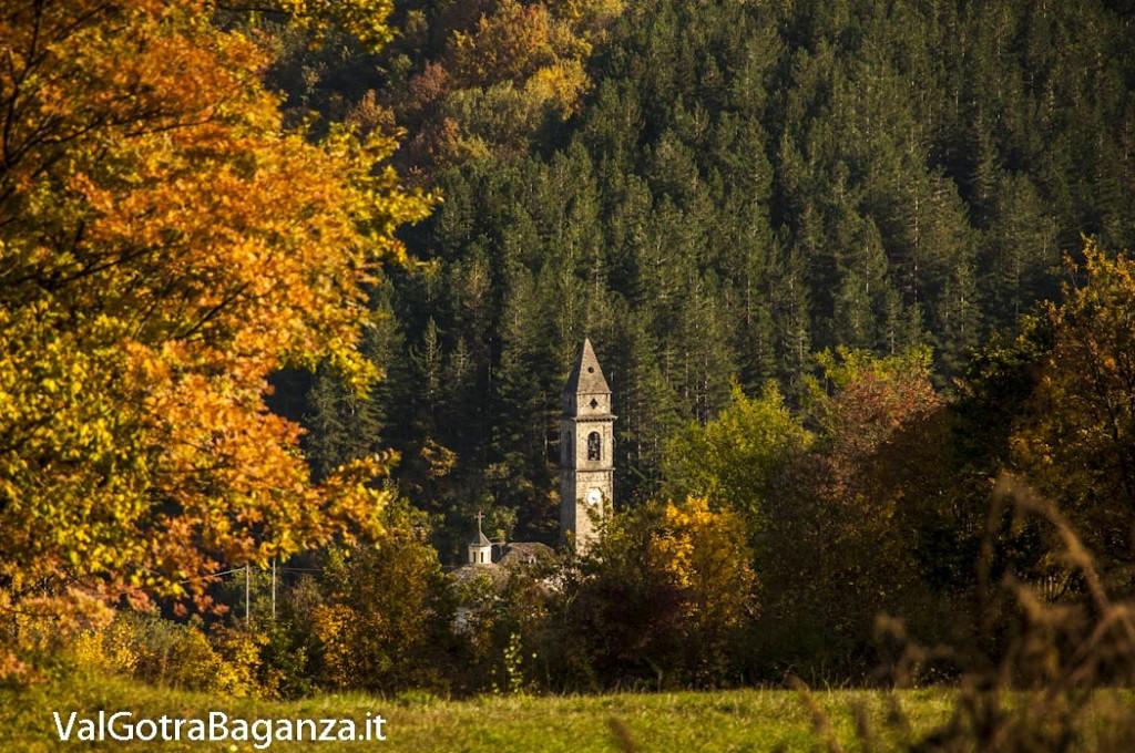 Foliage Albareto (133) Boschetto