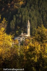 Foliage Albareto (148) Boschetto