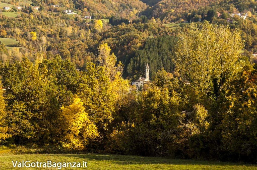Foliage Albareto (149) Boschetto