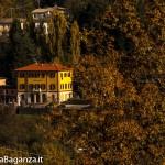 Foliage Albareto (234)