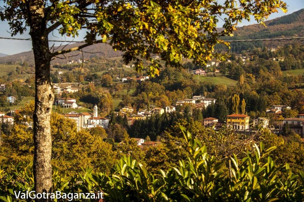 Foliage Albareto (249)