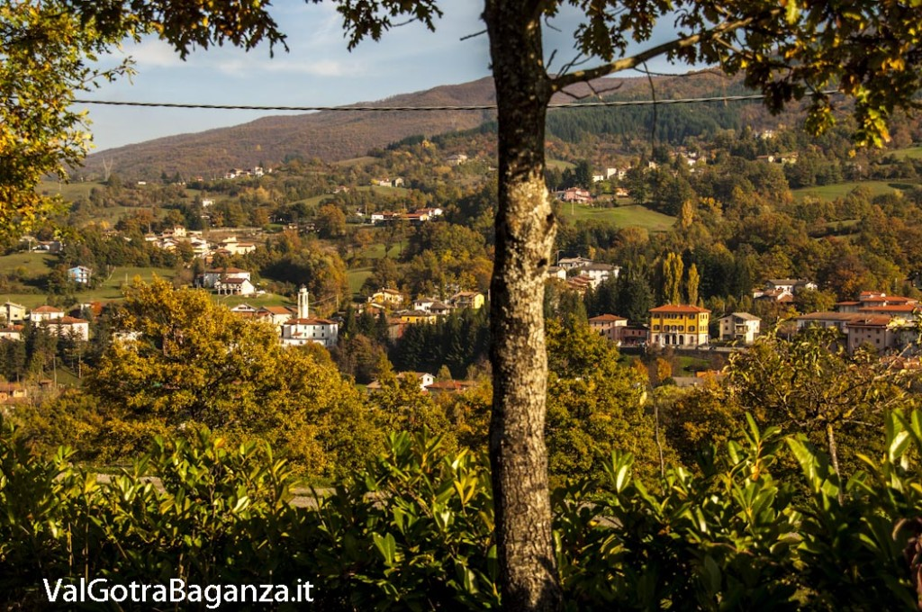 Foliage Albareto (253)