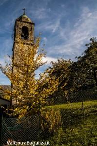 Foliage Albareto (269) San Quirico