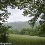 Riserva Naturale Regionale Ghirardi (106) Oasi WWF Parma
