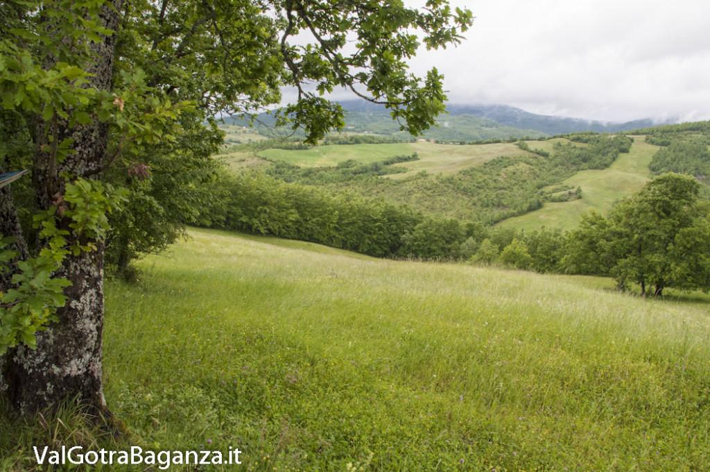 Riserva Naturale Regionale Ghirardi (119) Oasi WWF Parma