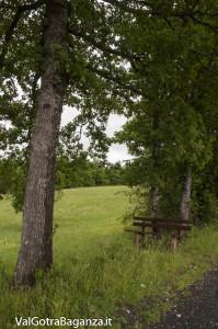 Riserva Naturale Regionale Ghirardi (136) Oasi WWF Parma