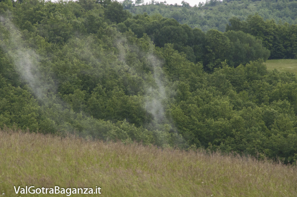 Riserva Naturale Regionale Ghirardi (146) Oasi WWF Parma