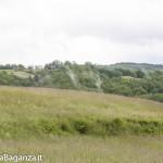 Riserva Naturale Regionale Ghirardi (147) Oasi WWF Parma