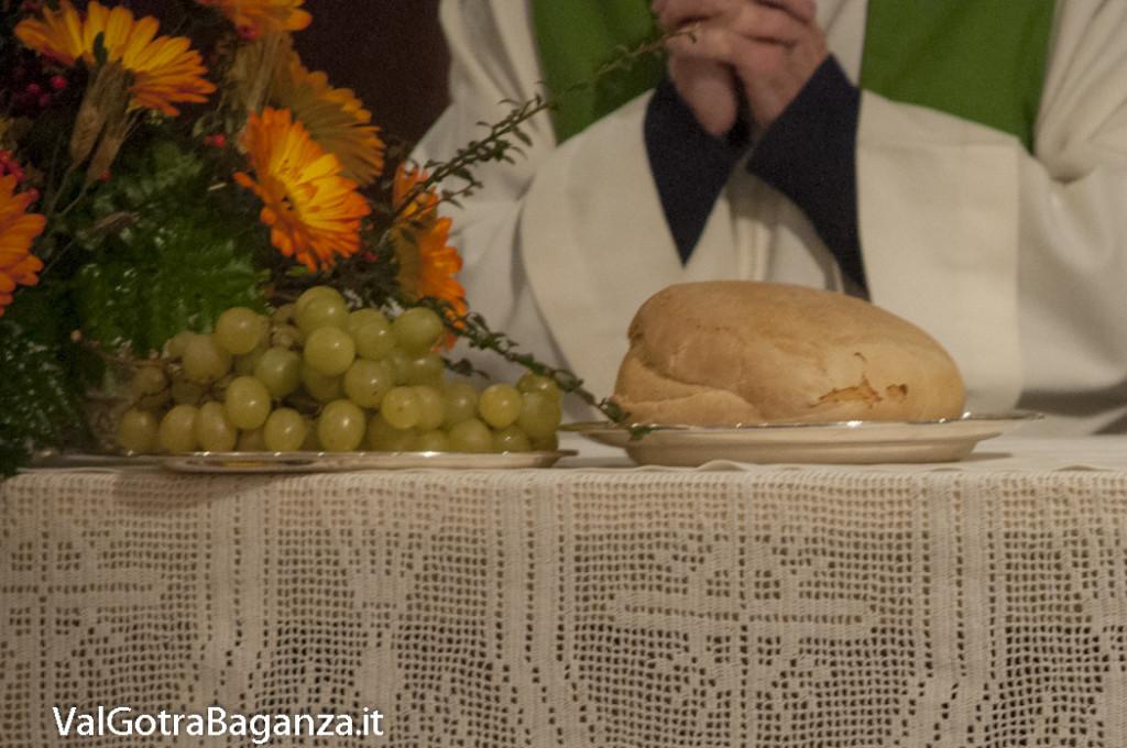 Chiusura Giubileo Giornata Ringraziamento (349) Bedonia
