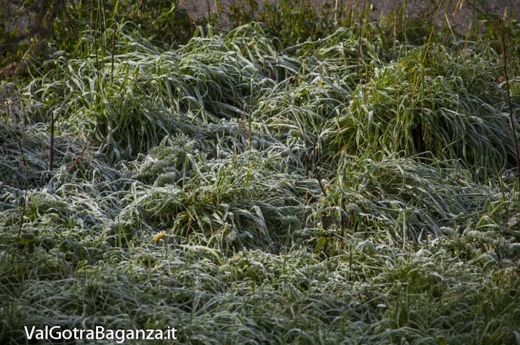 brinata (131) autunno inverno