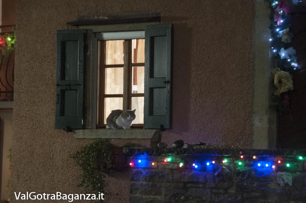 Berceto (151) natale notturno