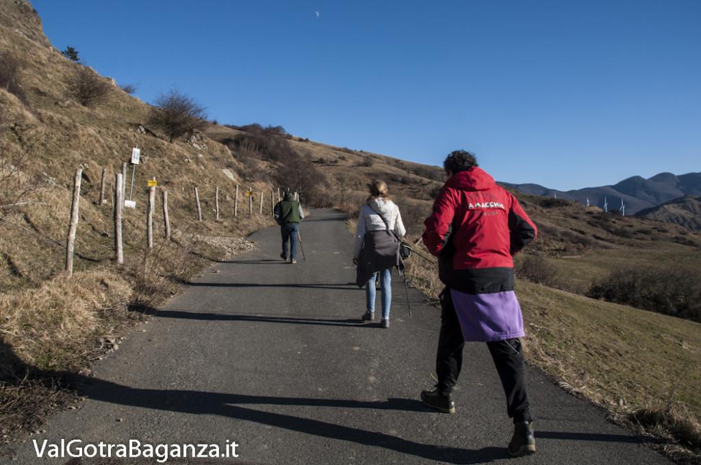 Passo Cappelletta (109) Folta