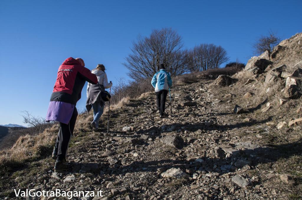 Passo Cappelletta (111) Folta