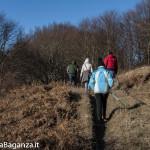 Passo Cappelletta (153) Folta