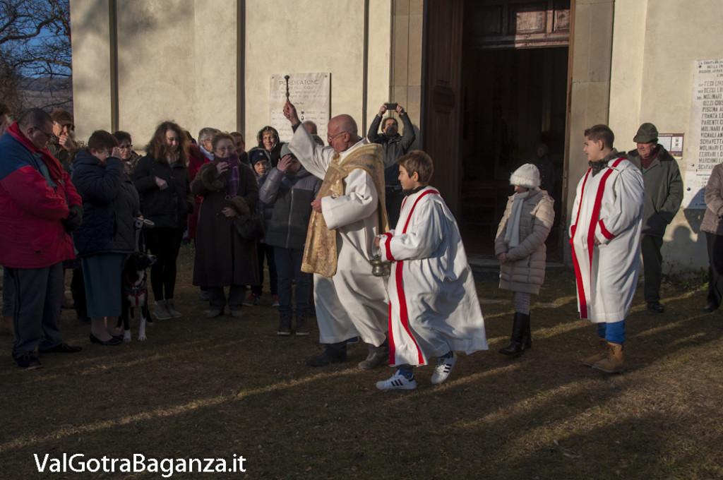 Sant'Antonio Abate (242) Porcigatone