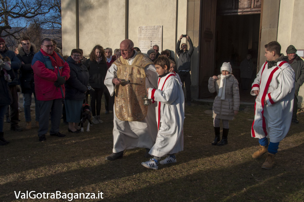 Sant'Antonio Abate (245) Porcigatone