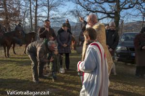 Sant'Antonio Abate (249) Porcigatone