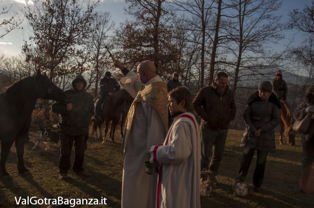 Sant'Antonio Abate (253) Porcigatone