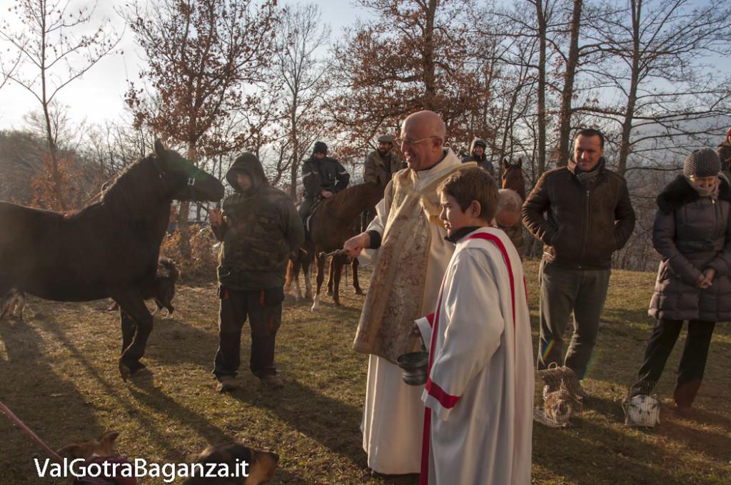 Sant'Antonio Abate (254) Porcigatone