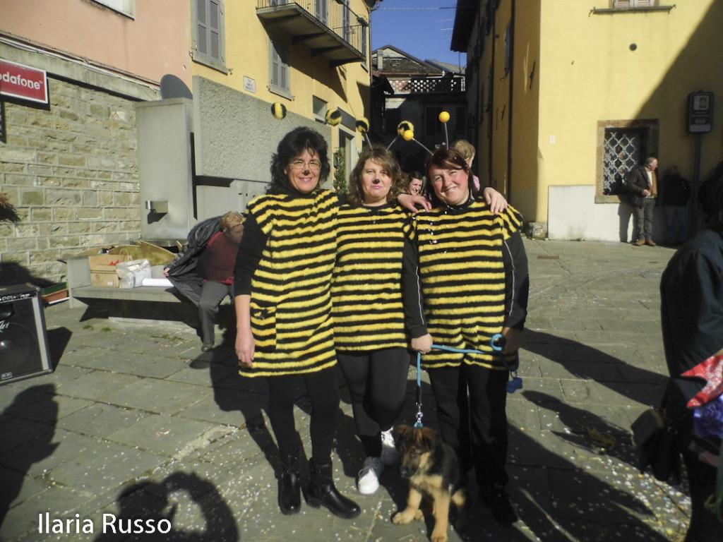 Berceto (145) Carnevale Bercetese