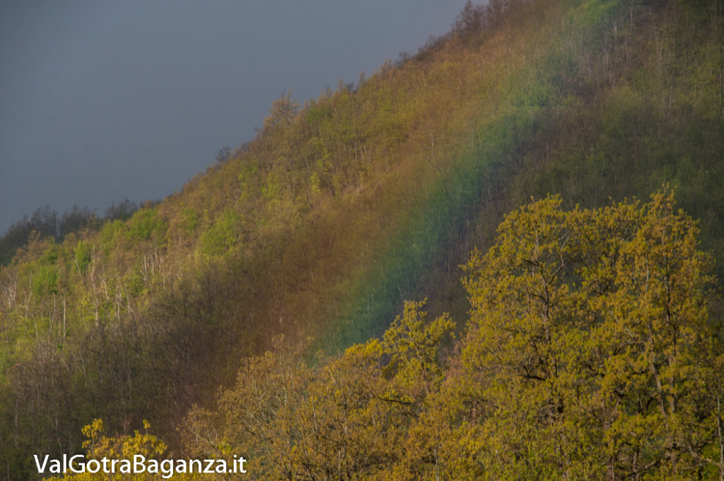 arcobaleno-103-primavera