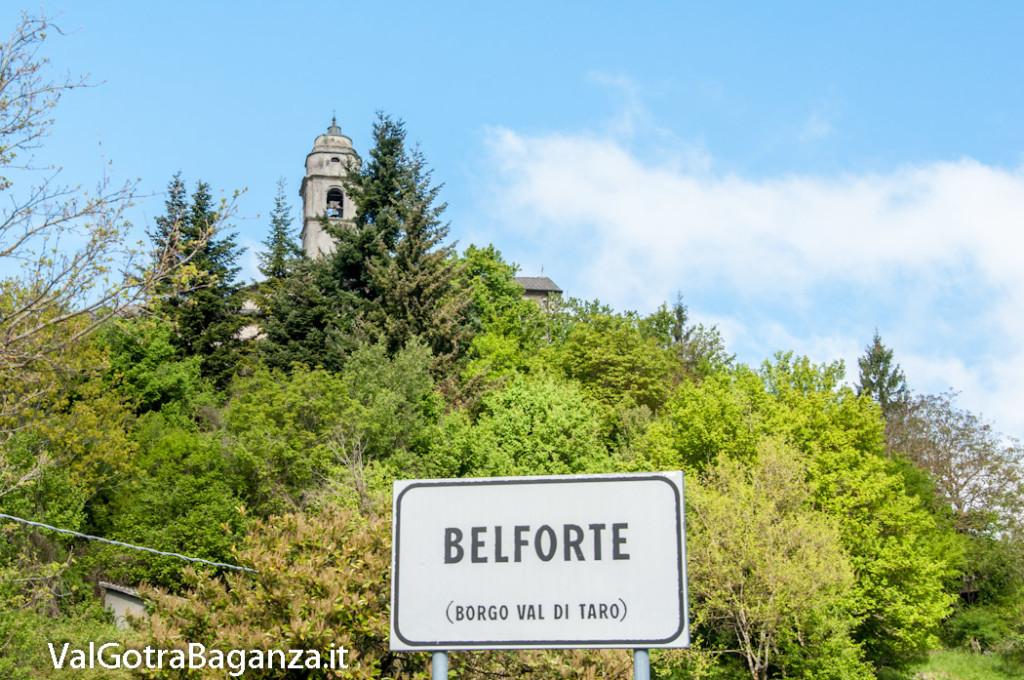 belforte-100