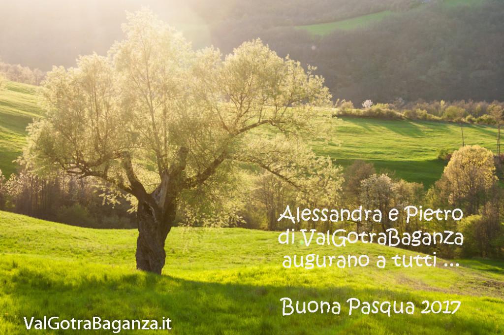 buona-pasqua-101-auguri
