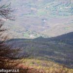 monte-pelpi-n129-taro-ceno