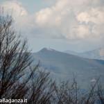 monte-pelpi-n157-taro-ceno