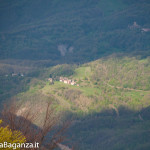 monte-pelpi-n167-taro-ceno