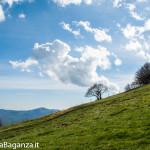 monte-pelpi-n226-taro-ceno