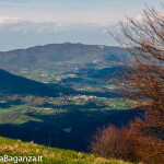 monte-pelpi-n229-taro-ceno