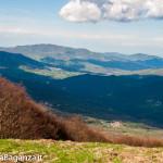 monte-pelpi-n239-taro-ceno