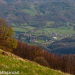 monte-pelpi-n263-taro-ceno