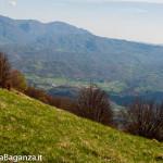 monte-pelpi-n264-taro-ceno