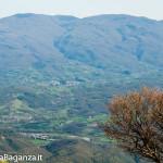 monte-pelpi-n327-taro-ceno