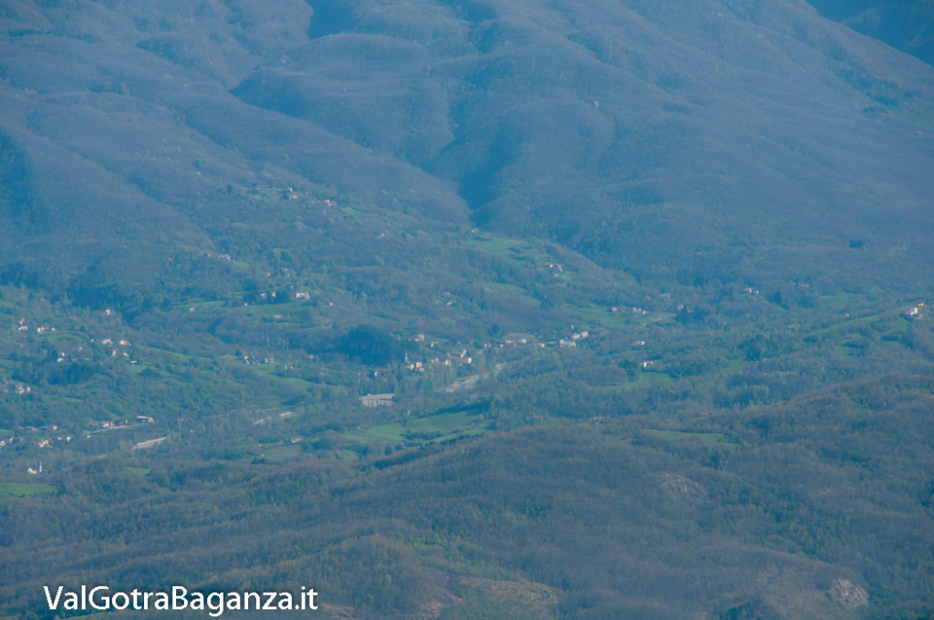 monte-pelpi-n336-taro-ceno