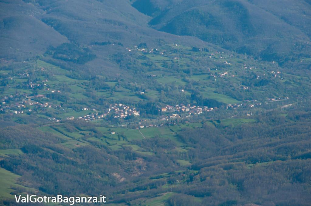 monte-pelpi-n337-taro-ceno